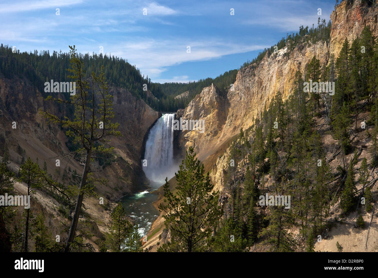 View of Lower Falls from Red Rock Point, Grand Canyon of the Yellowstone River, Yellowstone National Park, Wyoming, Stock Photo