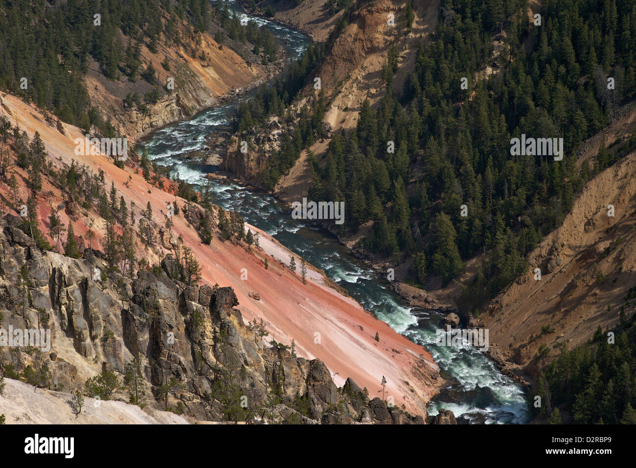 Grand Canyon of the Yellowstone River, from Inspiration Point, Yellowstone National Park, Wyoming, USA - Stock Image