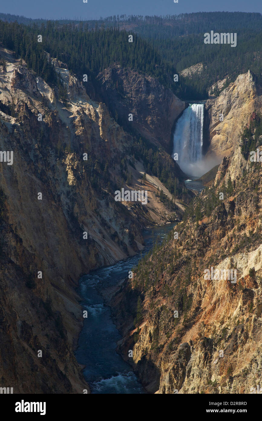 Lower Falls from Artists Point, Grand Canyon of the Yellowstone River, Yellowstone National Park, Wyoming, USA - Stock Image