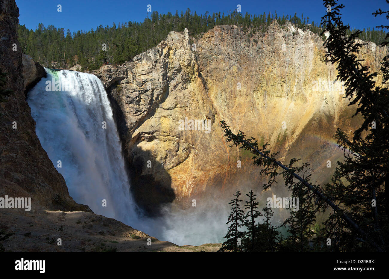 Panoramic photo of Lower Falls from Uncle Tom's Point, Grand Canyon of the Yellowstone, Yellowstone National - Stock Image