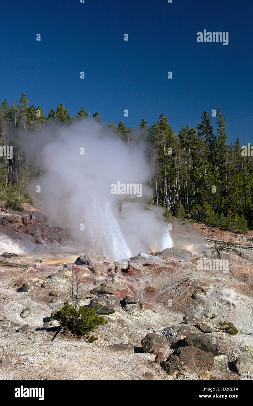 Minor eruption from Steamboat Geyser, Norris Geyser Basin, Yellowstone National Park, Wyoming, USA - Stock Image