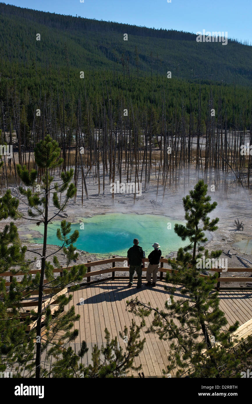 Visitors at Cistern Spring, Norris Geyser Basin, Yellowstone UNESCO World Heritage Site, Wyoming, USA - Stock Image