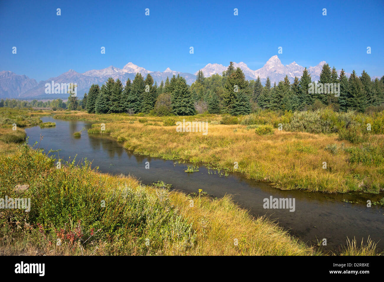 Snake River at the Schwabacher Landing, Grand Teton National Park, Wyoming, United States of America, North America - Stock Image