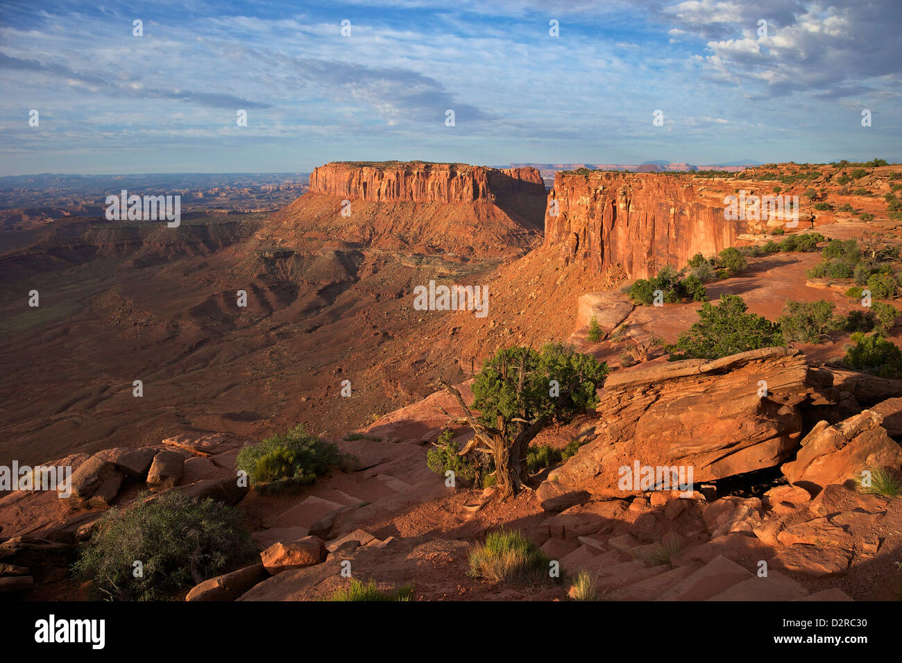 Grand View Point Overlook, Canyonlands National Park, Utah, United States of America, North America - Stock Image