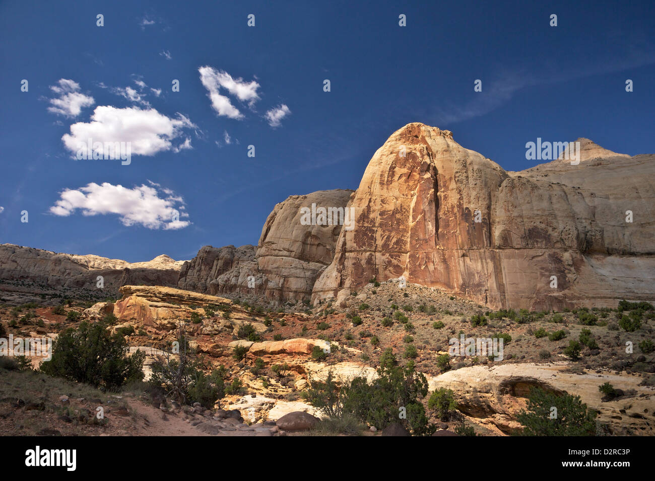 Hickman Bridge Trail, Navajo Dome, Capitol Reef National Park, Utah, United States of America, North America - Stock Image