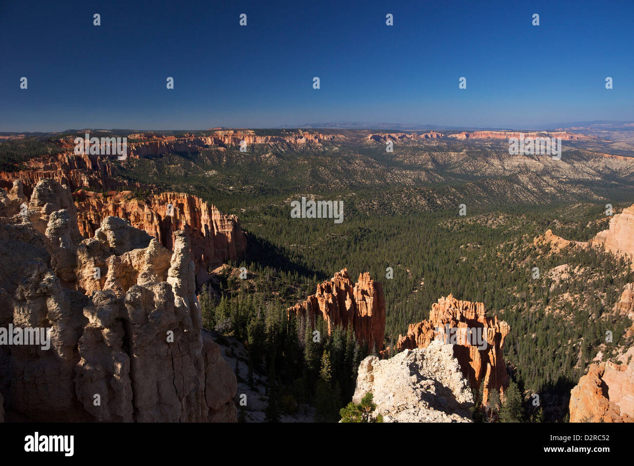 View early morning from Ponderosa Point, Bryce Canyon National Park, Utah, United States of America, North America - Stock Image