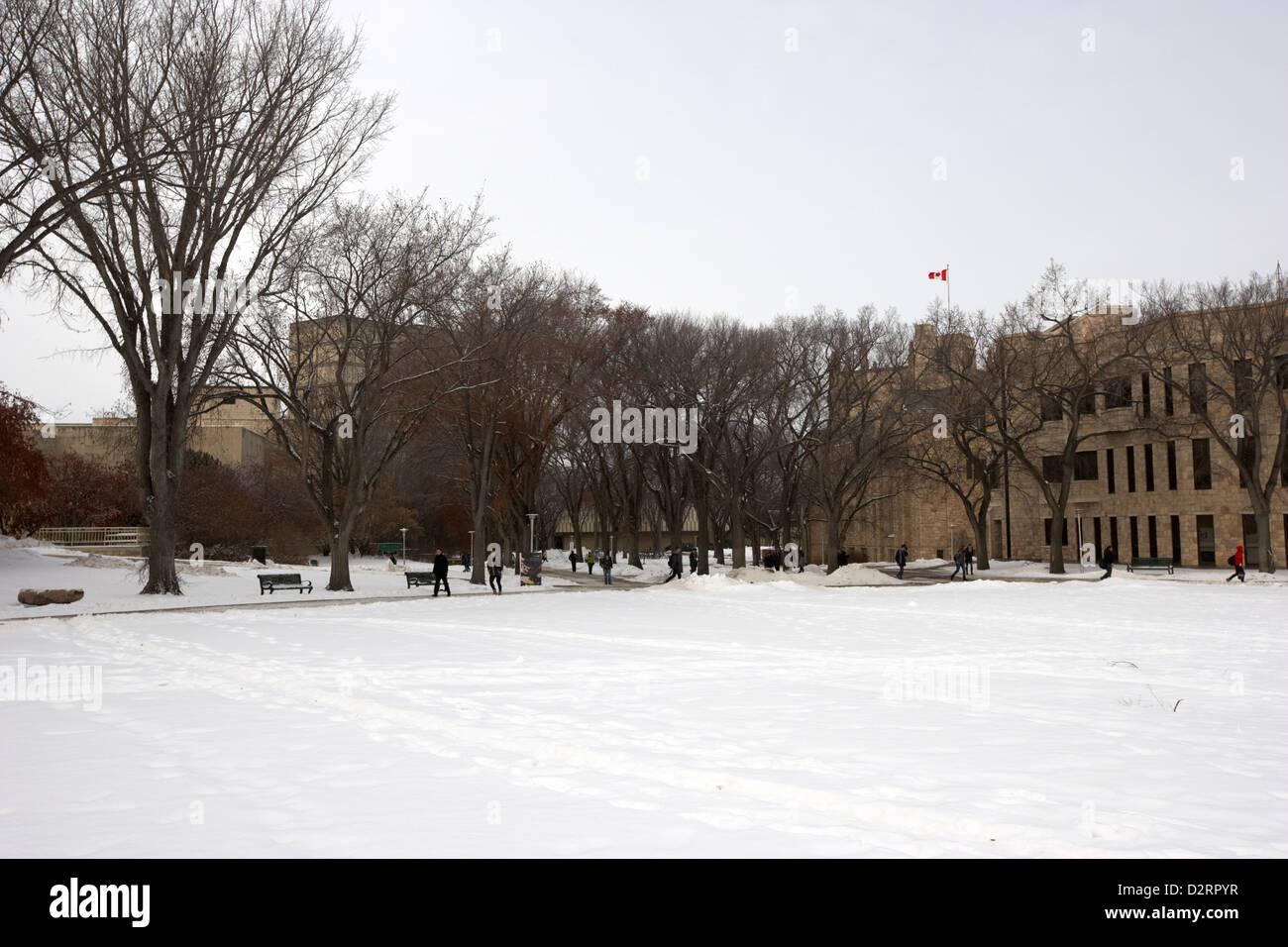 the bowl open space university of Saskatchewan Saskatoon in winter Canada - Stock Image