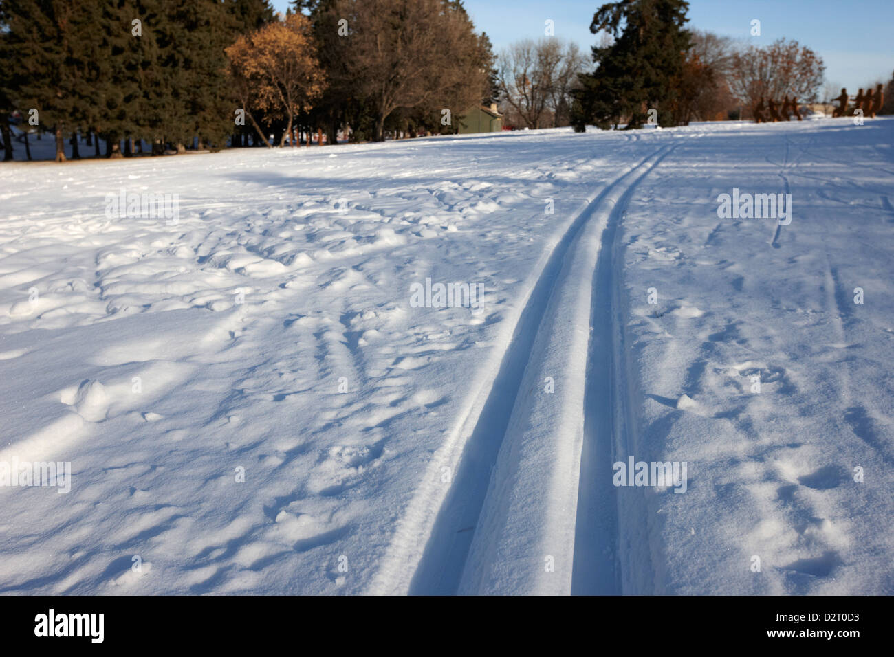 cross country skiing tracks in kinsmen park Saskatoon Saskatchewan Canada - Stock Image