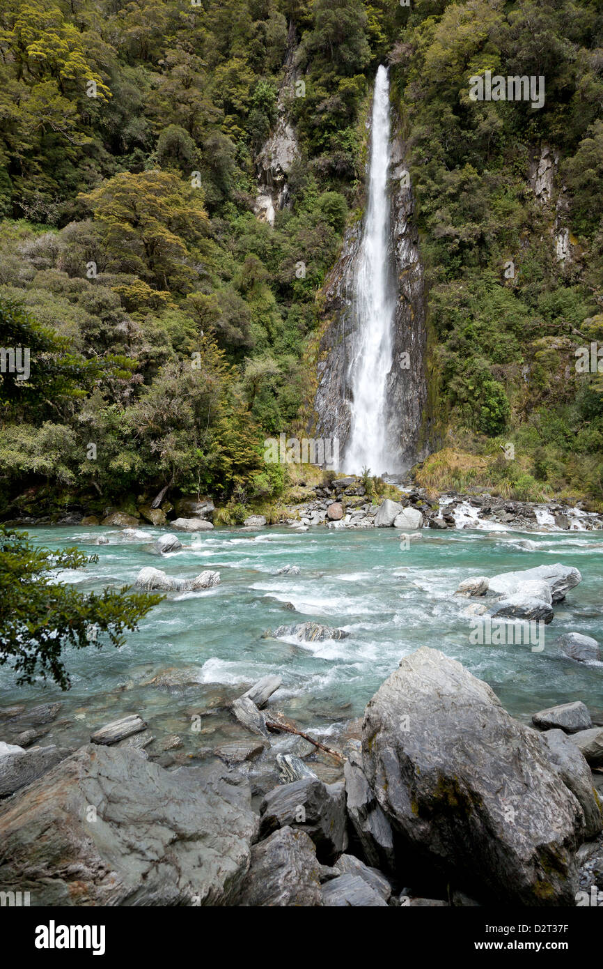 Thunder Creek Falls ends in the Haast River, New Zealand - Stock Image