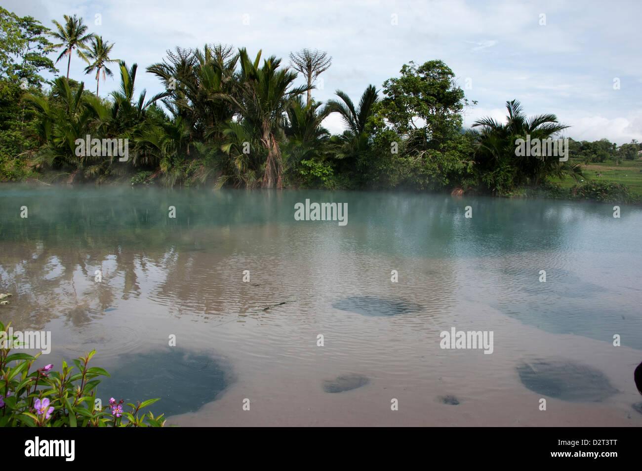 Hot spring pool, Sulawesi, Indonesia, Southeast Asia, Asia - Stock Image