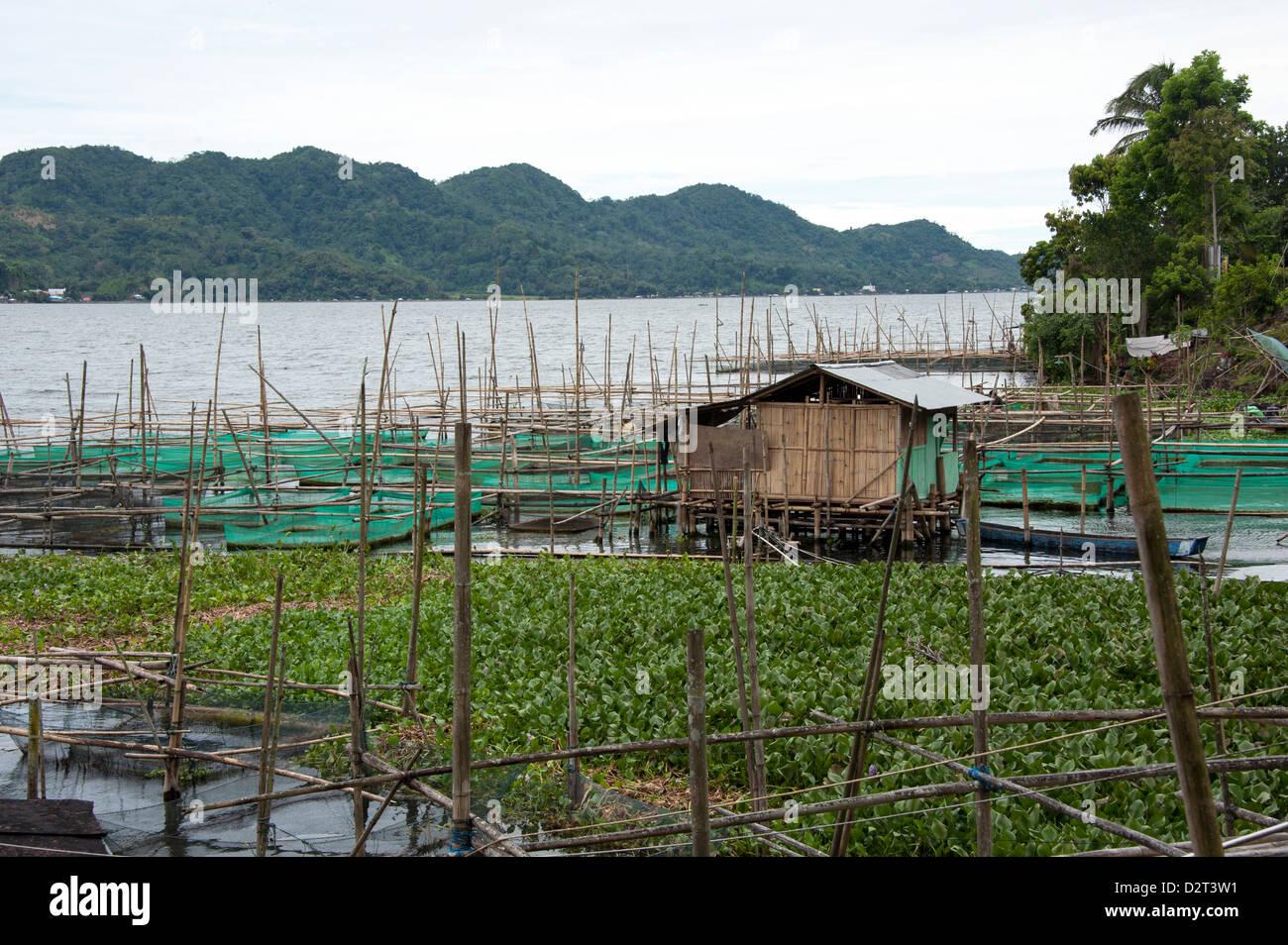 Tondano Lake, Sulawesi, Indonesia, Southeast Asia, Asia - Stock Image