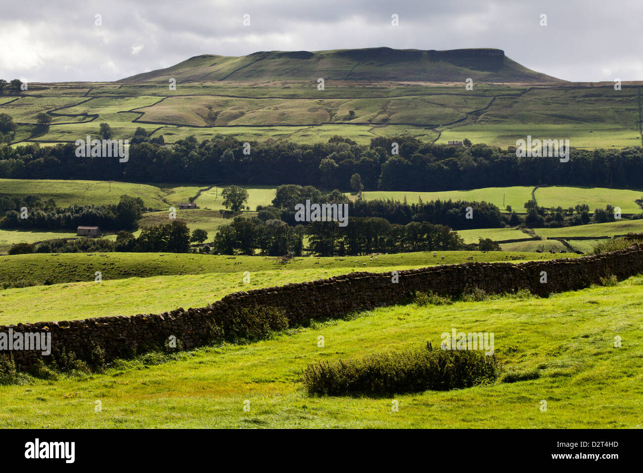 Addlebrough from Askrigg in Wensleydale, Yorkshire Dales, North Yorkshire, Yorkshire, England, United Kingdom, Europe - Stock Image
