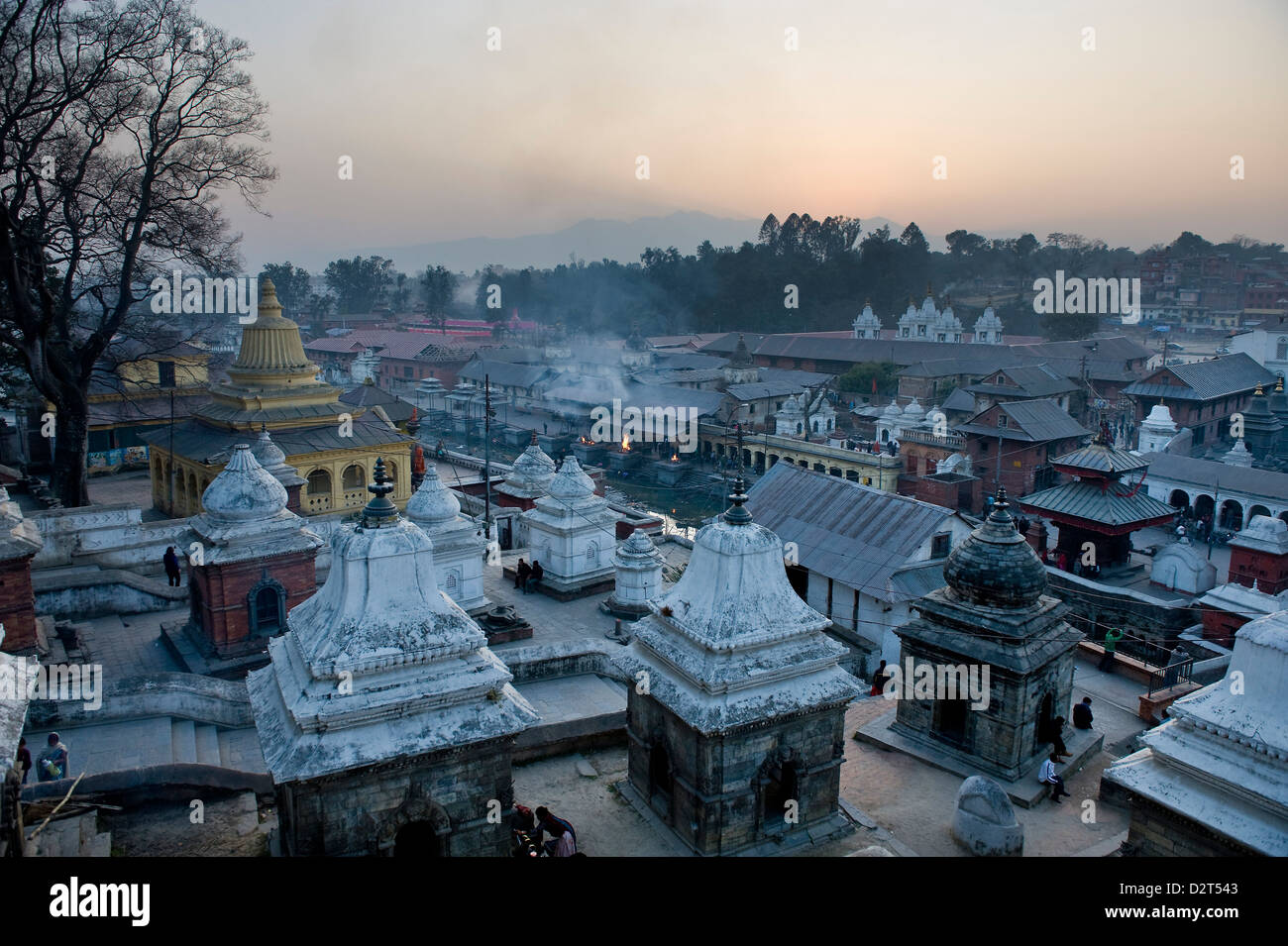Pashupatinath Temple, UNESCO World Heritage Site, Kathmandu, Nepal, Asia - Stock Image