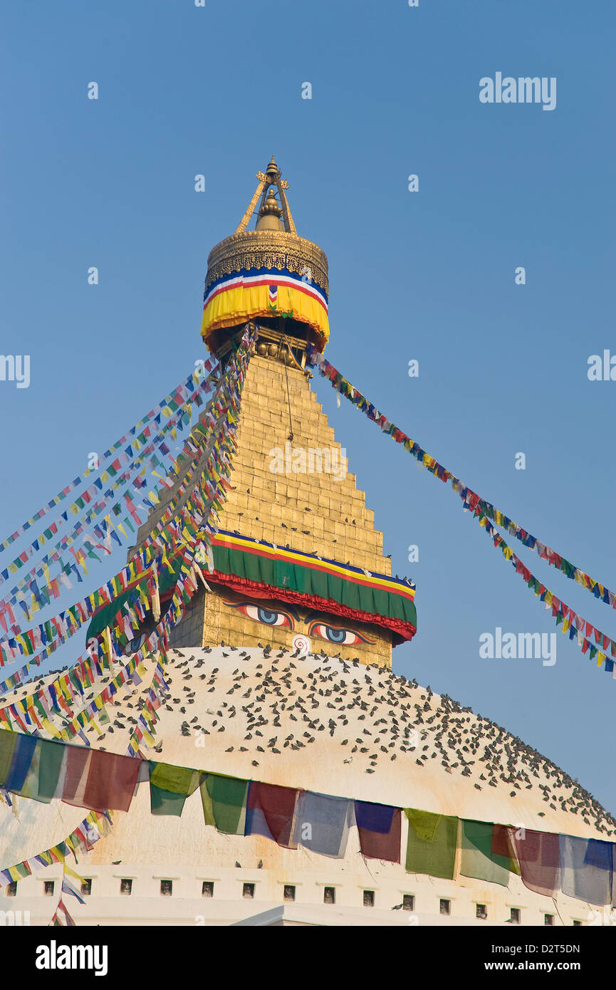 Boudhanath, UNESCO World Heritage Site, Kathmandu, Nepal, Asia - Stock Image
