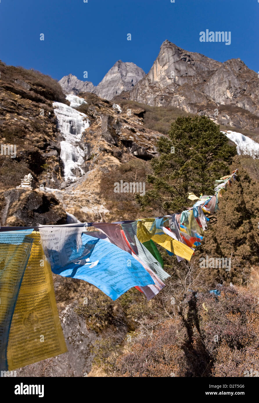 Prayer flags, Dudh Kosi Valley, Solu Khumbu (Everest) Region, Nepal, Himalayas, Asia - Stock Image