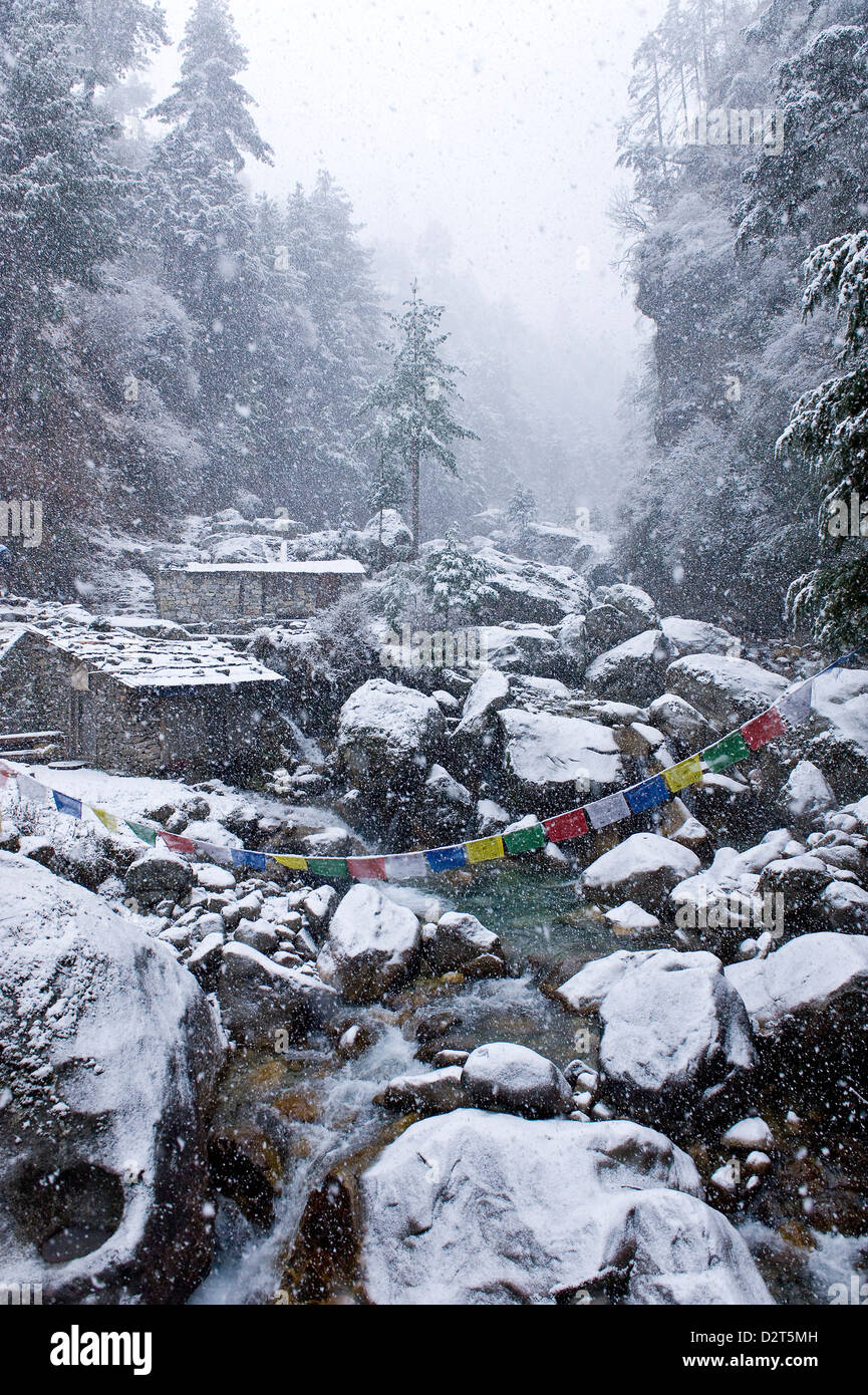 Dodh Kosi River, Khumbu (Everest) Region, Nepal, Himalayas, Asia - Stock Image