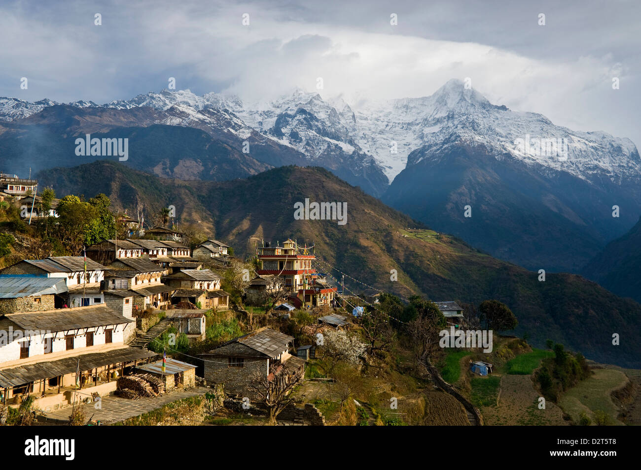 Ghandruk, 1990 metres, Annapurna Himal, Nepal, Himalayas, Asia - Stock Image