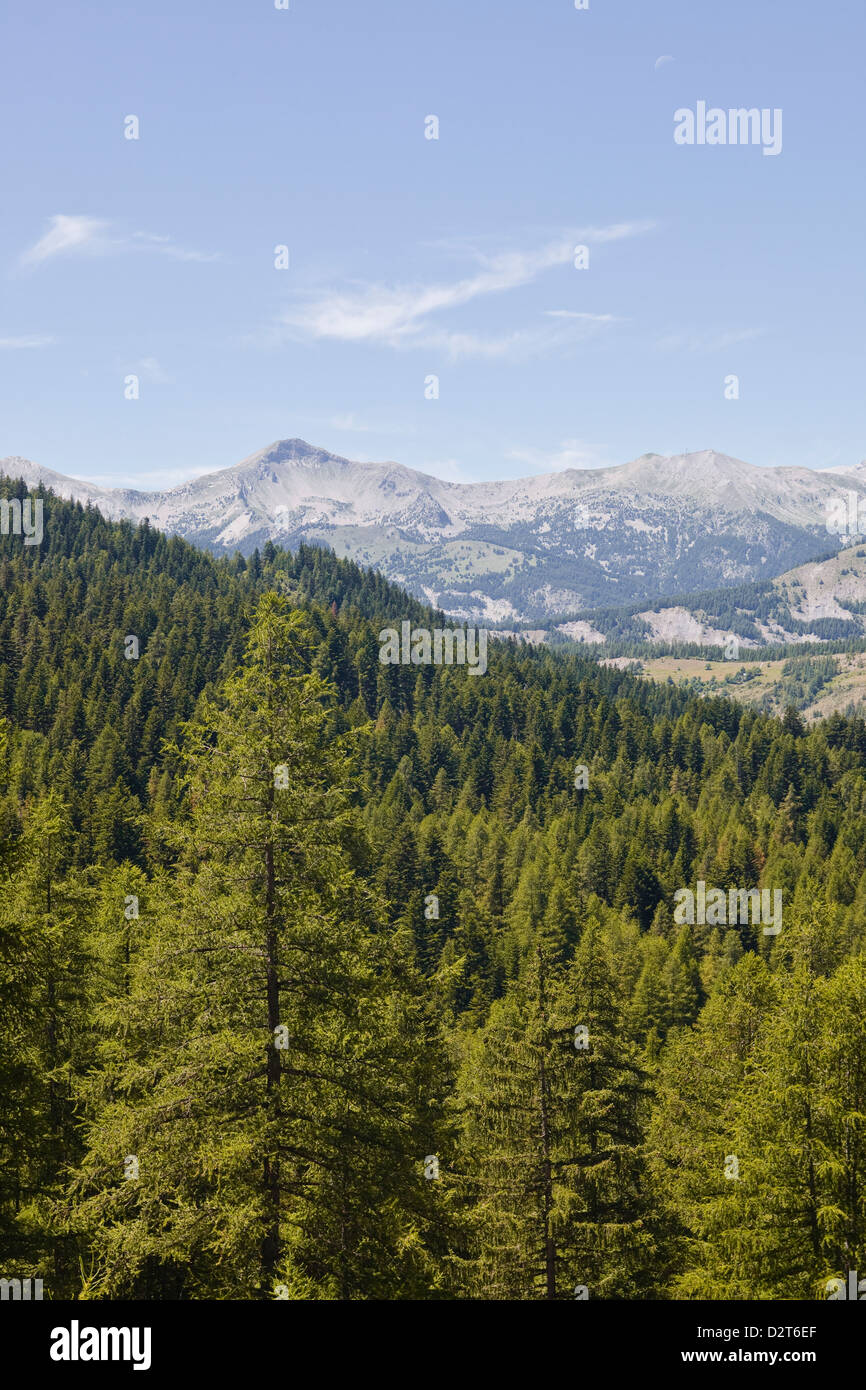 The southern Alps in the Parc National du Mercantour near Allos, Alpes-de-Haute-Provence, Provence, France, Europe - Stock Image
