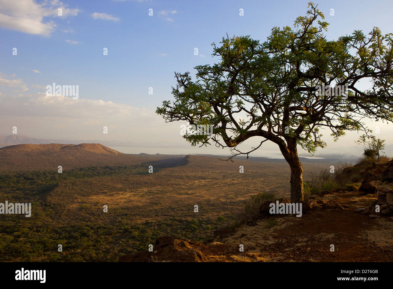 Nechisar National Park, Arba Minch (Arba Migie), Rift Valley region, Ethiopia, Africa Stock Photo