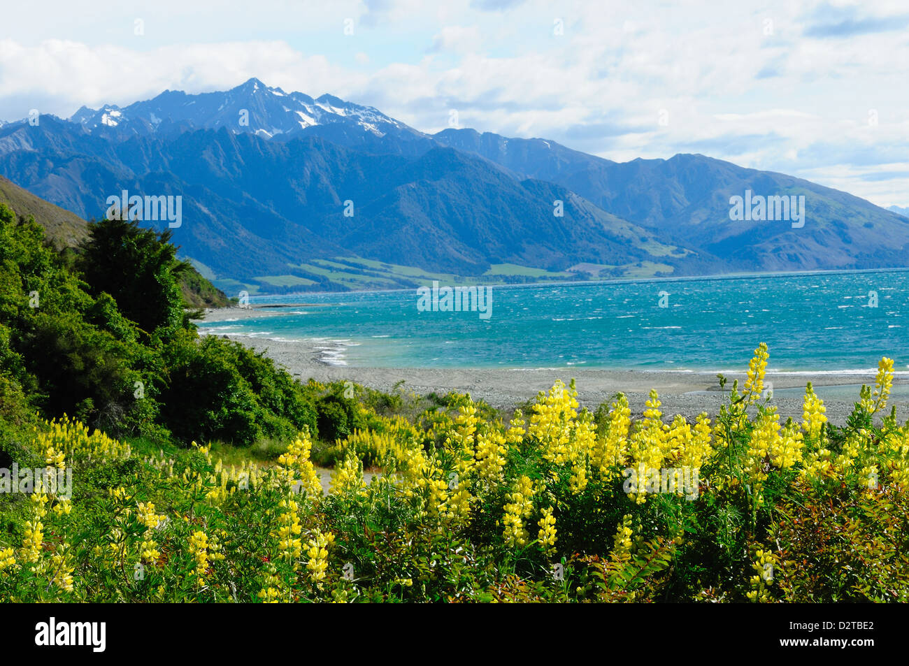 Lake Te Anau, Southland, South Island, New Zealand, Pacific - Stock Image