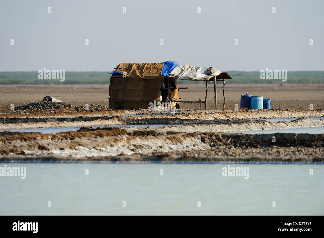 Thatched hut, home of the salt workers in Little Rann of Kutch, Gujarat, India, Asia - Stock Image