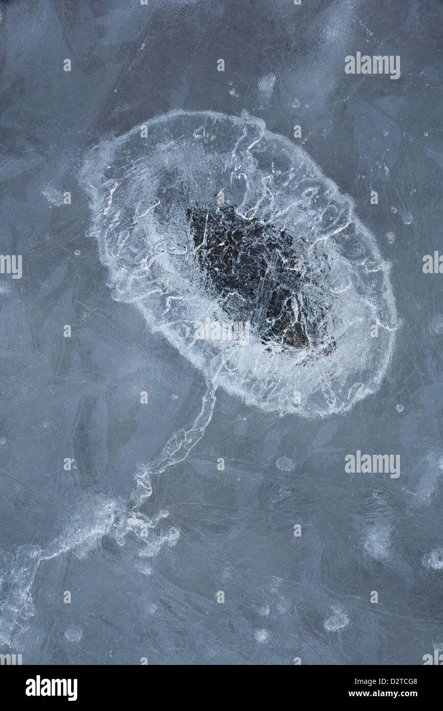 Air bubble in ice at Larkollen in Rygge, Østfold fylke, Norway. - Stock Image