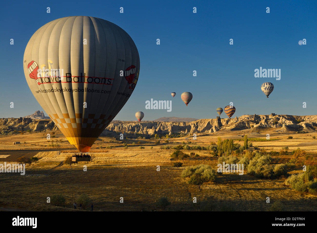 Hot air balloon landing in farm fields at Love Valley and Goreme National Park Nevsehir Cappadocia Turkey with moon - Stock Image