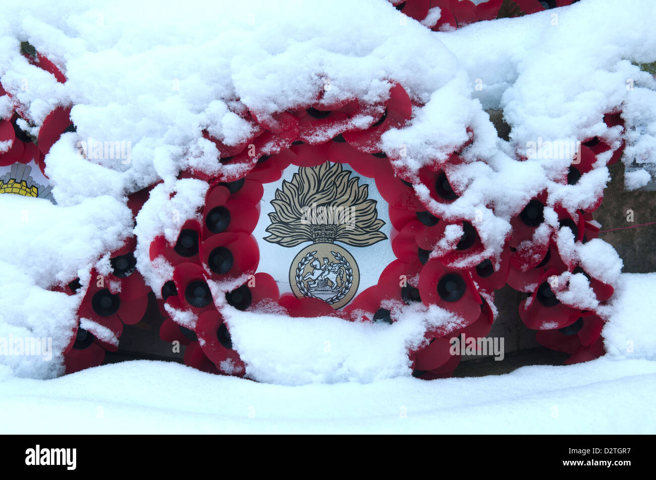 Poppy wreaths with snow on - Stock Image