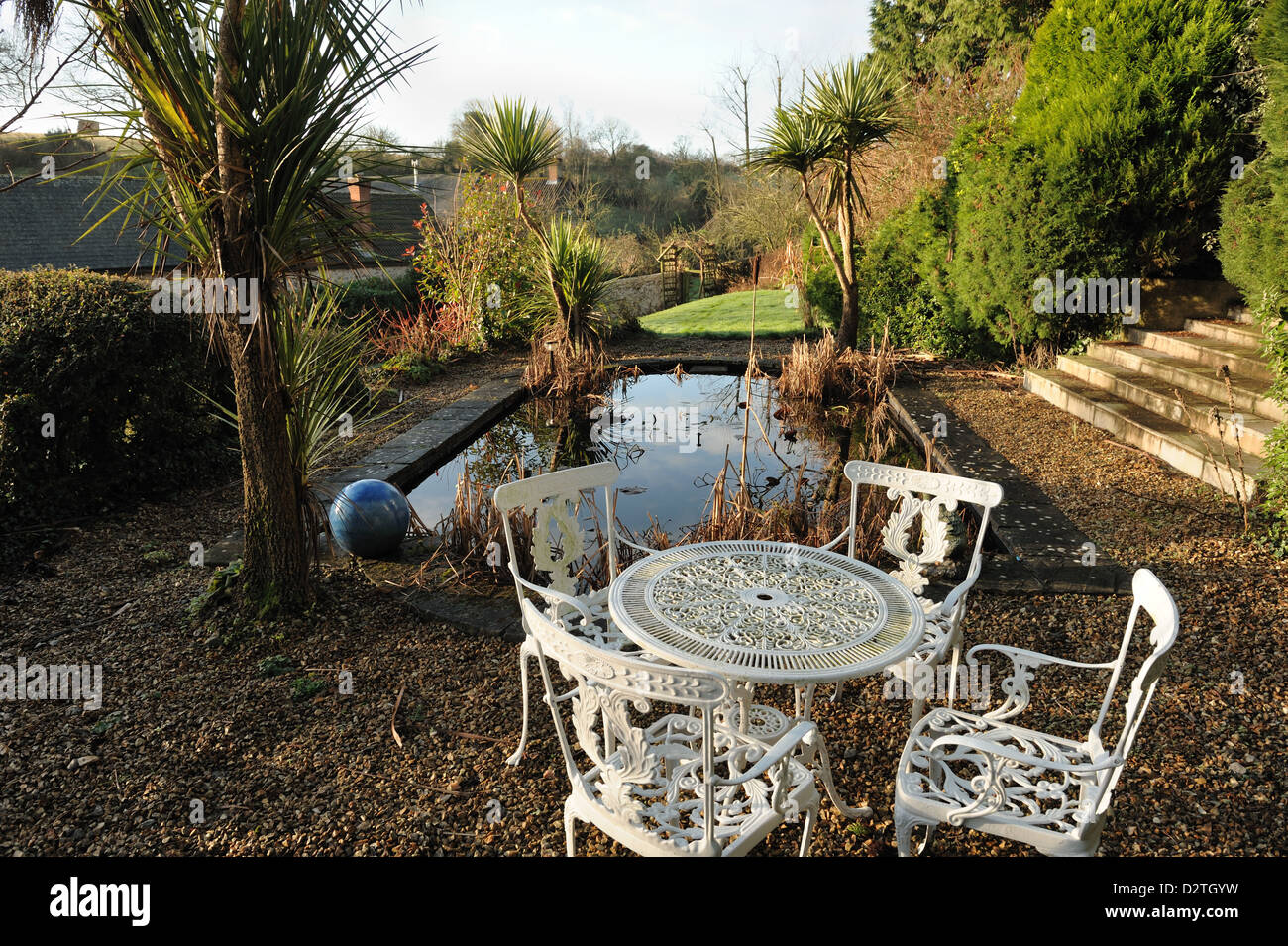 Formal garden pond with dead rushes and irises, garden table and chairs and Torbay palm trees, Cordyline australis, - Stock Image