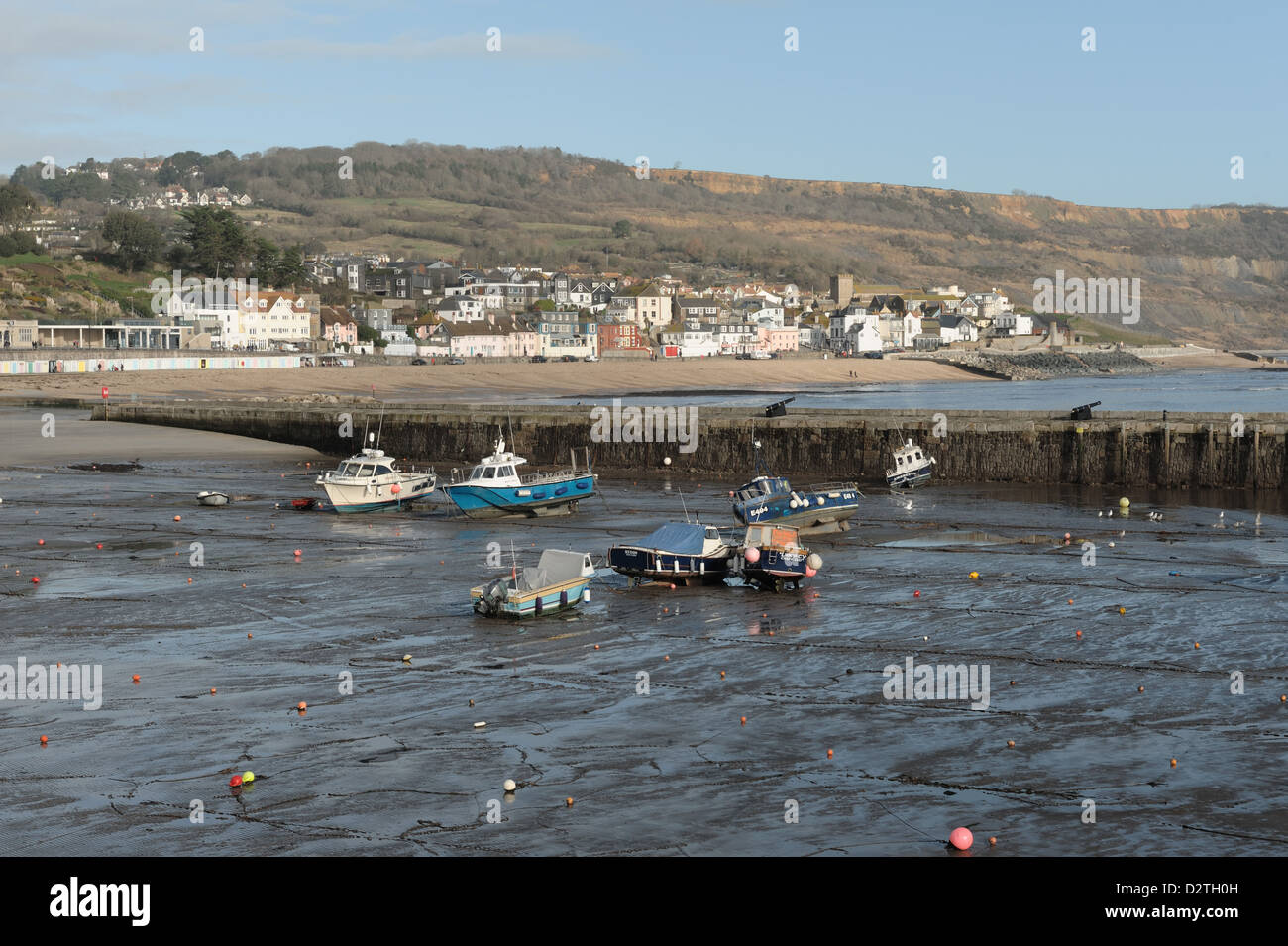 Lyme Regis harbour at low tide in winter from The Cobb, with the town and beach beyond - Stock Image