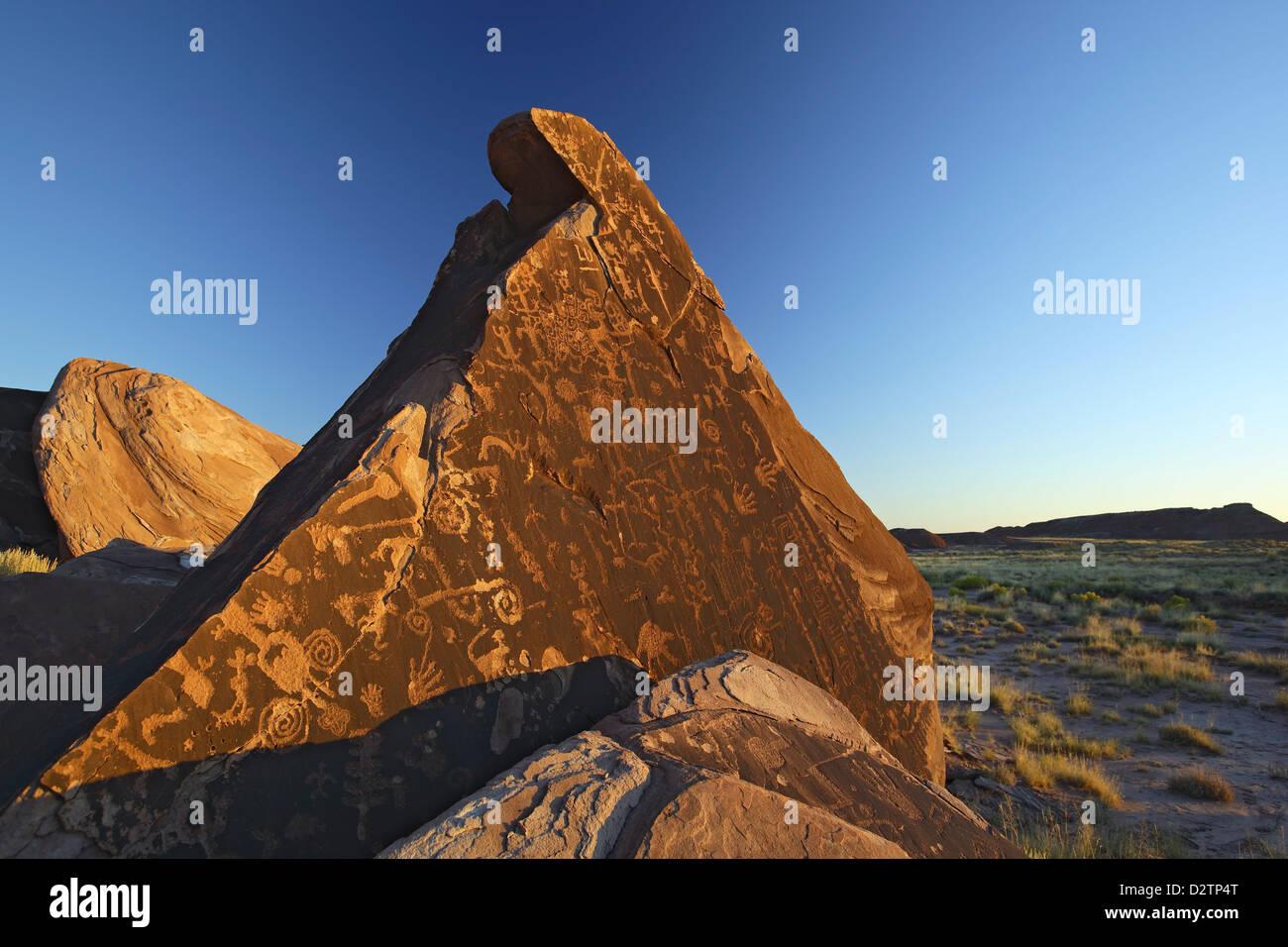 Petroglyphs panel, Petrified Forest National Park, Arizona USA - Stock Image