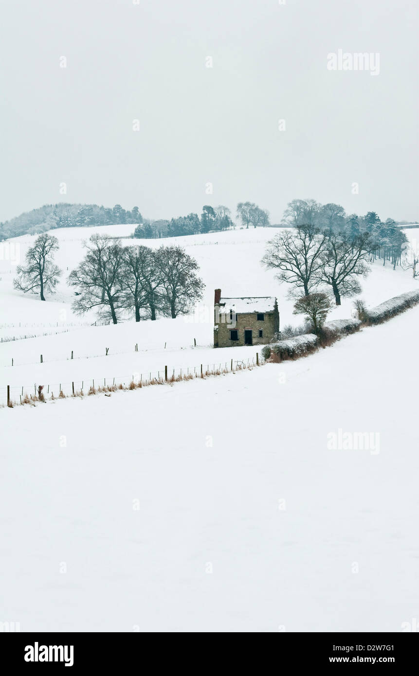 A lonely derelict cottage in a snowy winter landscape in the border country near Clungunford, Shropshire, UK - Stock Image