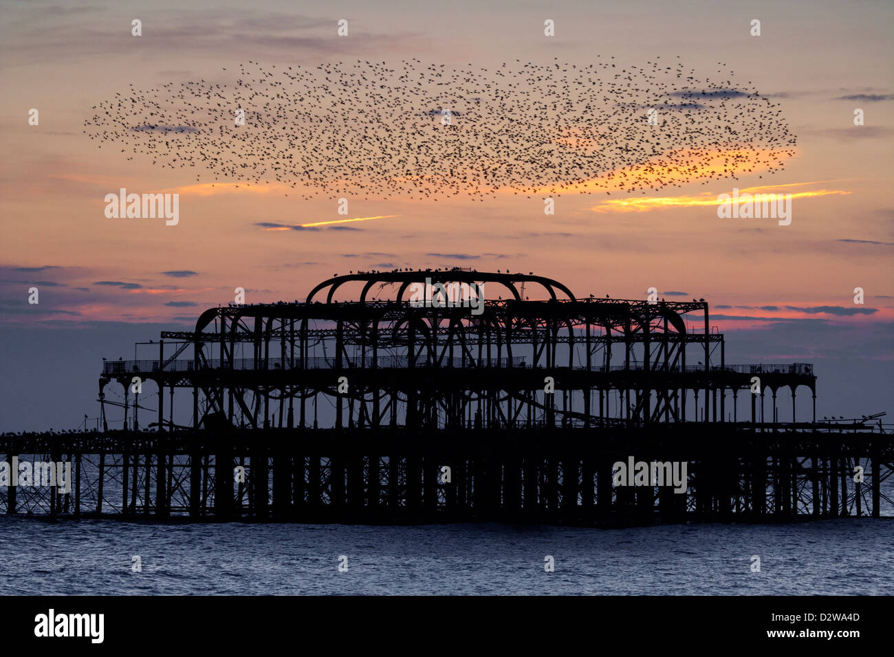 Starlings flying over Brighton's burnt out west pier at sunset in East Sussex, UK. - Stock Image