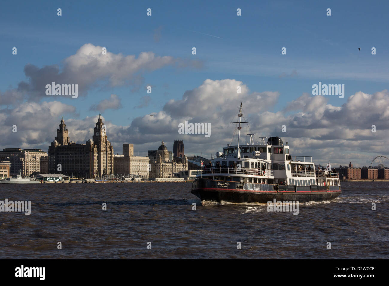 A Mersey Ferry the 'MV Royal Iris of the Mersey' on the River Mersey with the Liverpool waterfront in the - Stock Image