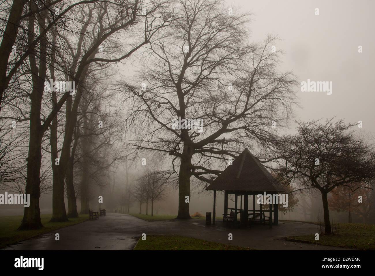 foggy morning, Waterlow Park, Highgate, London - Stock Image