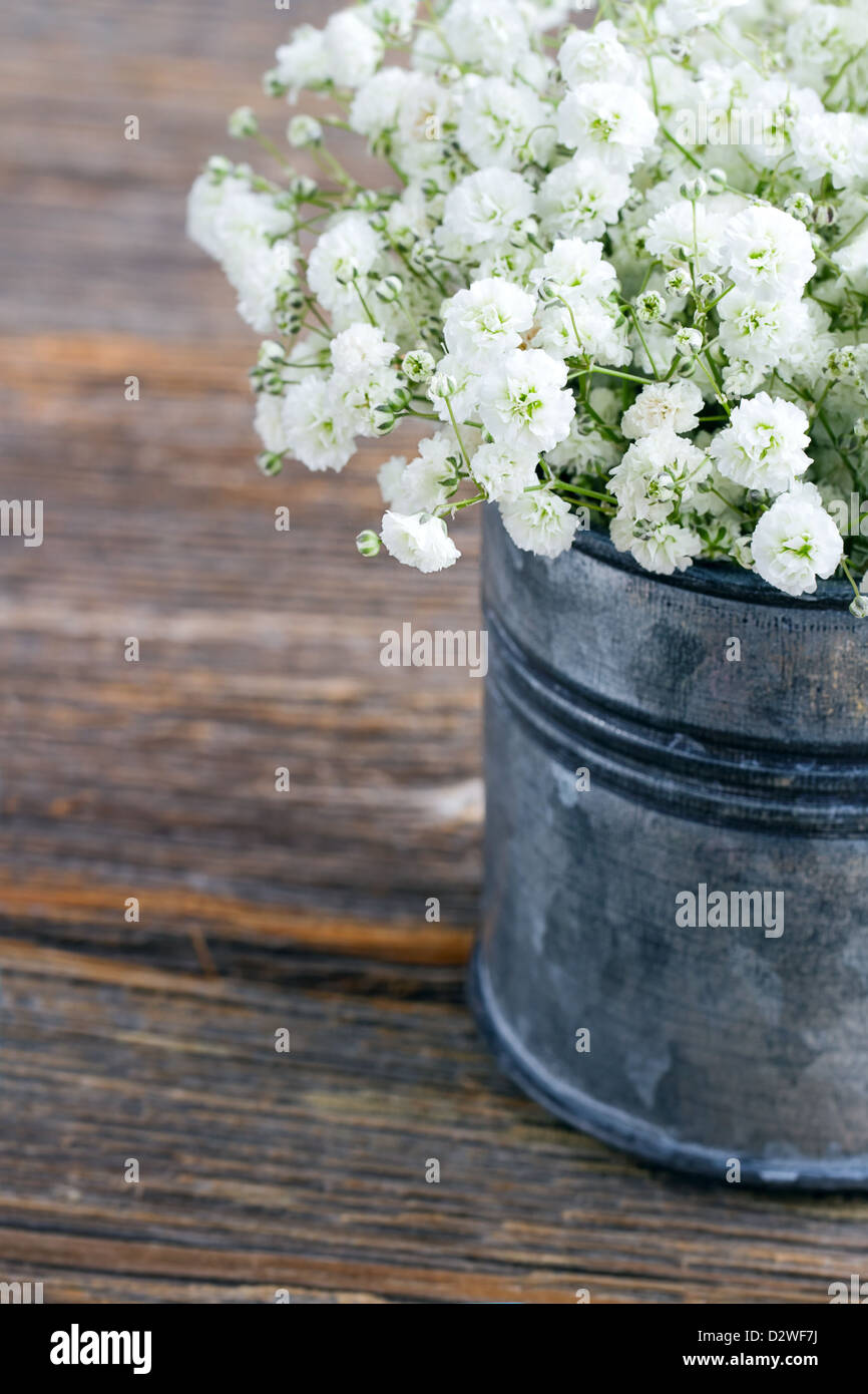 Bouquet of white babys breath flowers gypsophila on wooden rustic bouquet of white babys breath flowers gypsophila on wooden rustic background izmirmasajfo