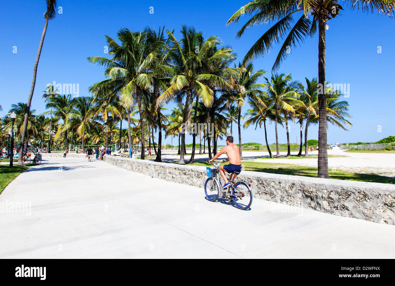 Lummus Park, Miami Beach, USA - Stock Image