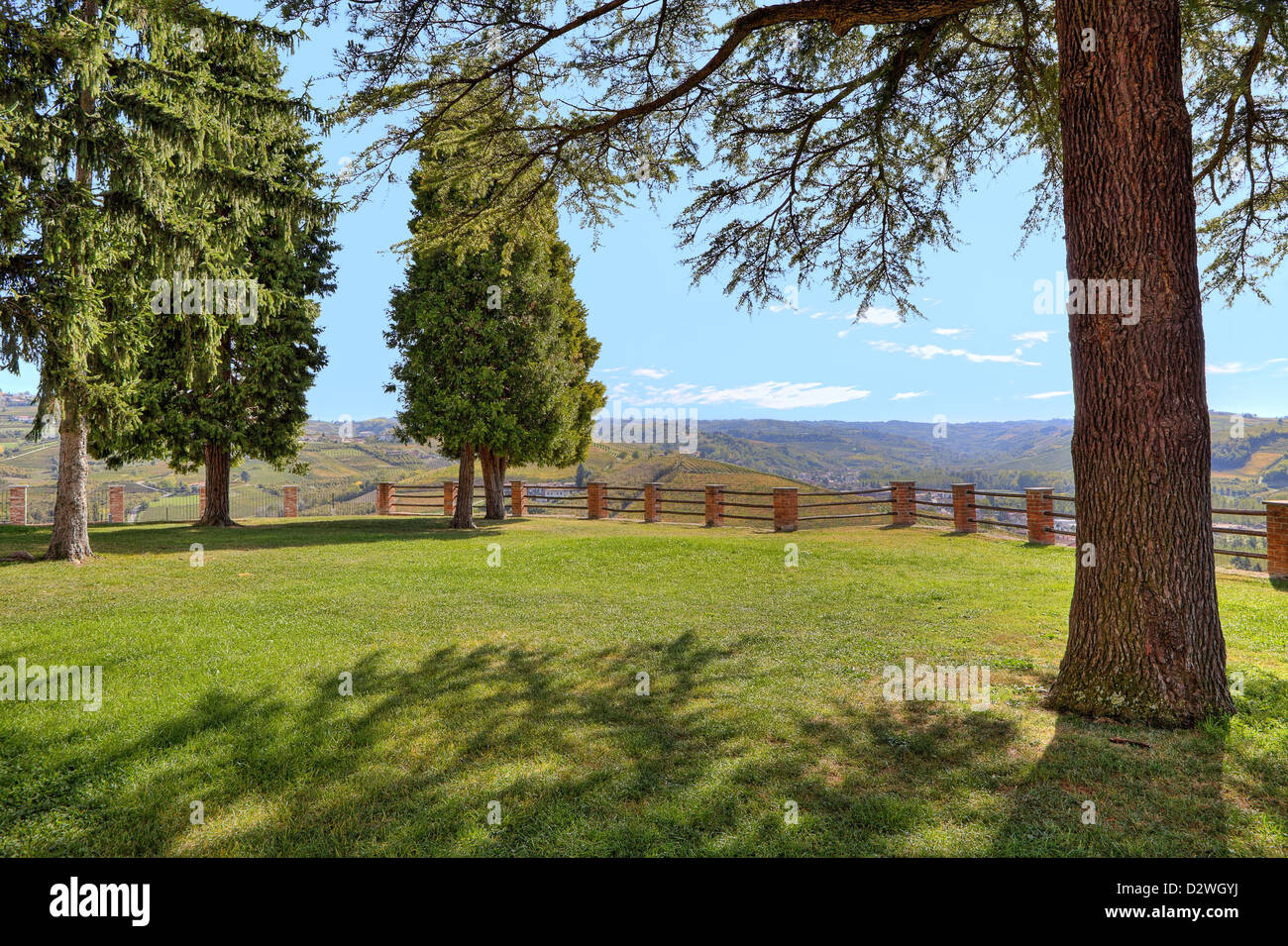 Trees on green lawn and hills on background under blue sky in Piedmont, Northern Italy. - Stock Image