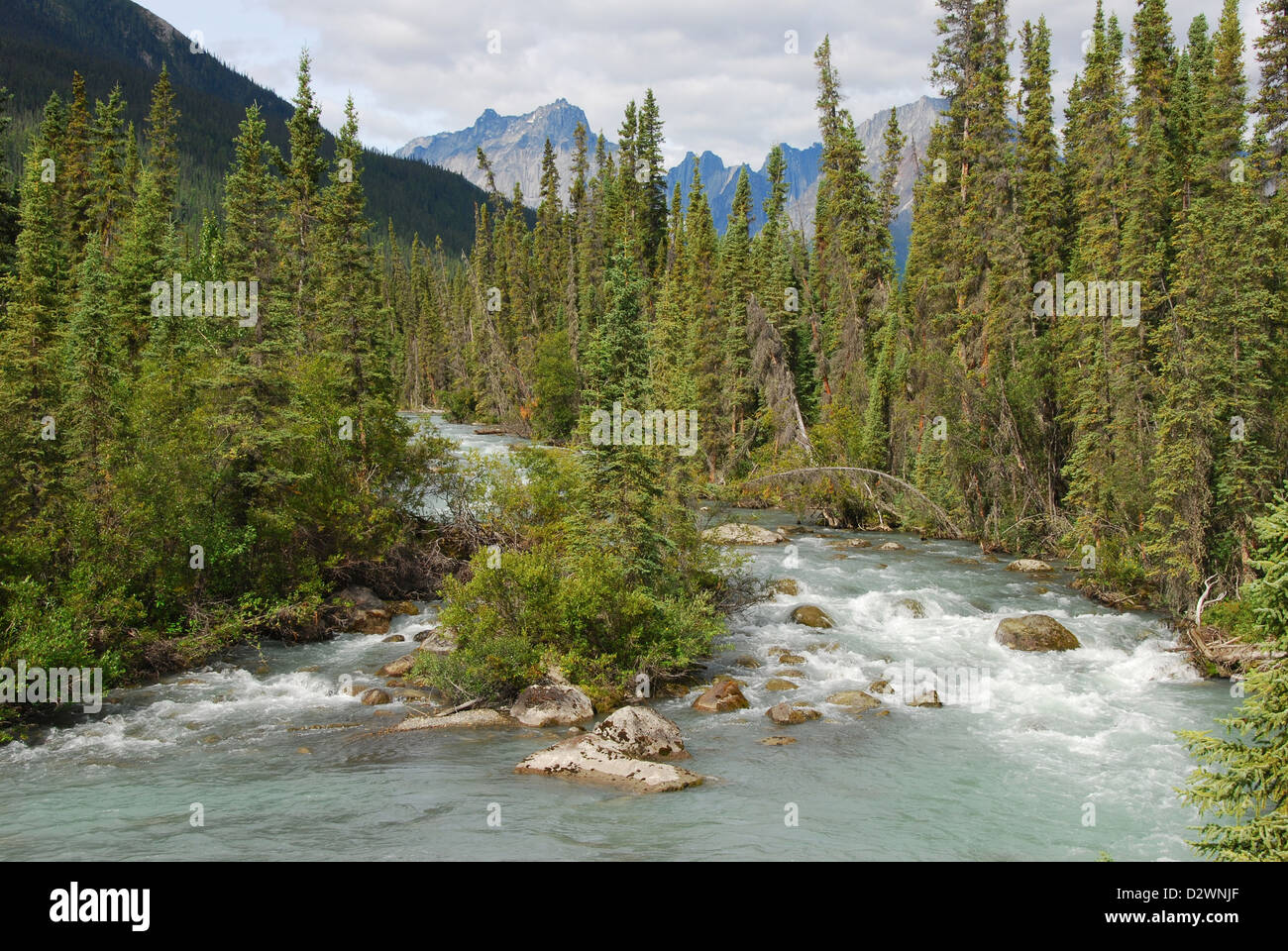 Brintnell Creek and the Ragged Range in Canada's Northwest Territories. - Stock Image