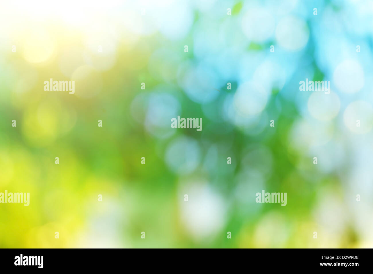 Background blur of nature in spring. - Stock Image