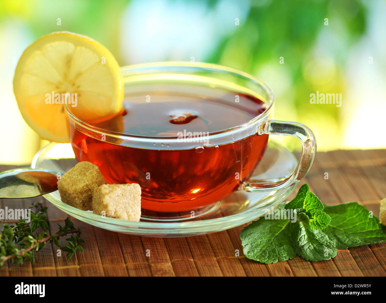 Cup of tea on a blurred background of nature. - Stock Image