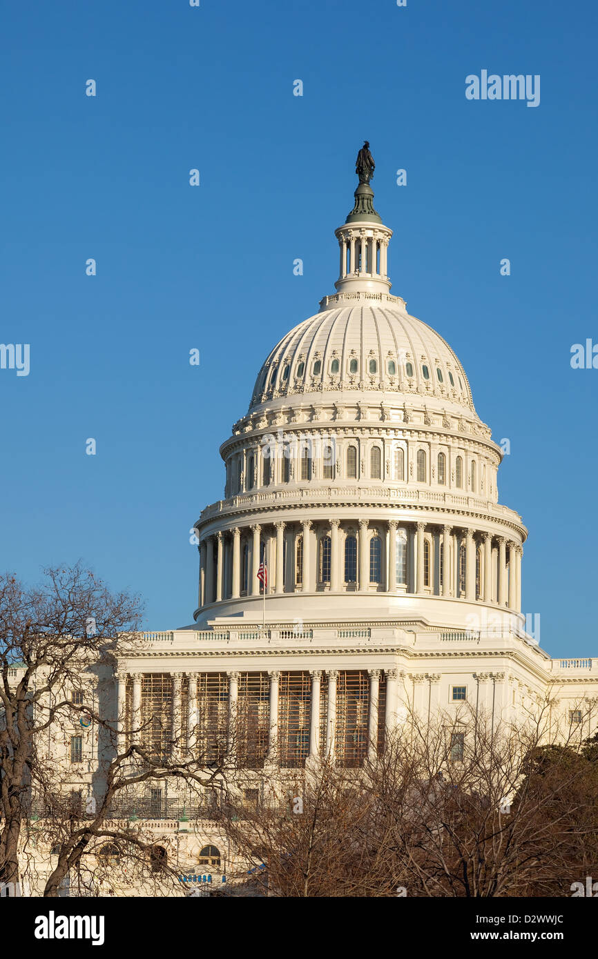 U.S. Capitol Dome Rear Face in Winter Afternoon Sunshine against Clear Blue Sky with Copy Space - Stock Image