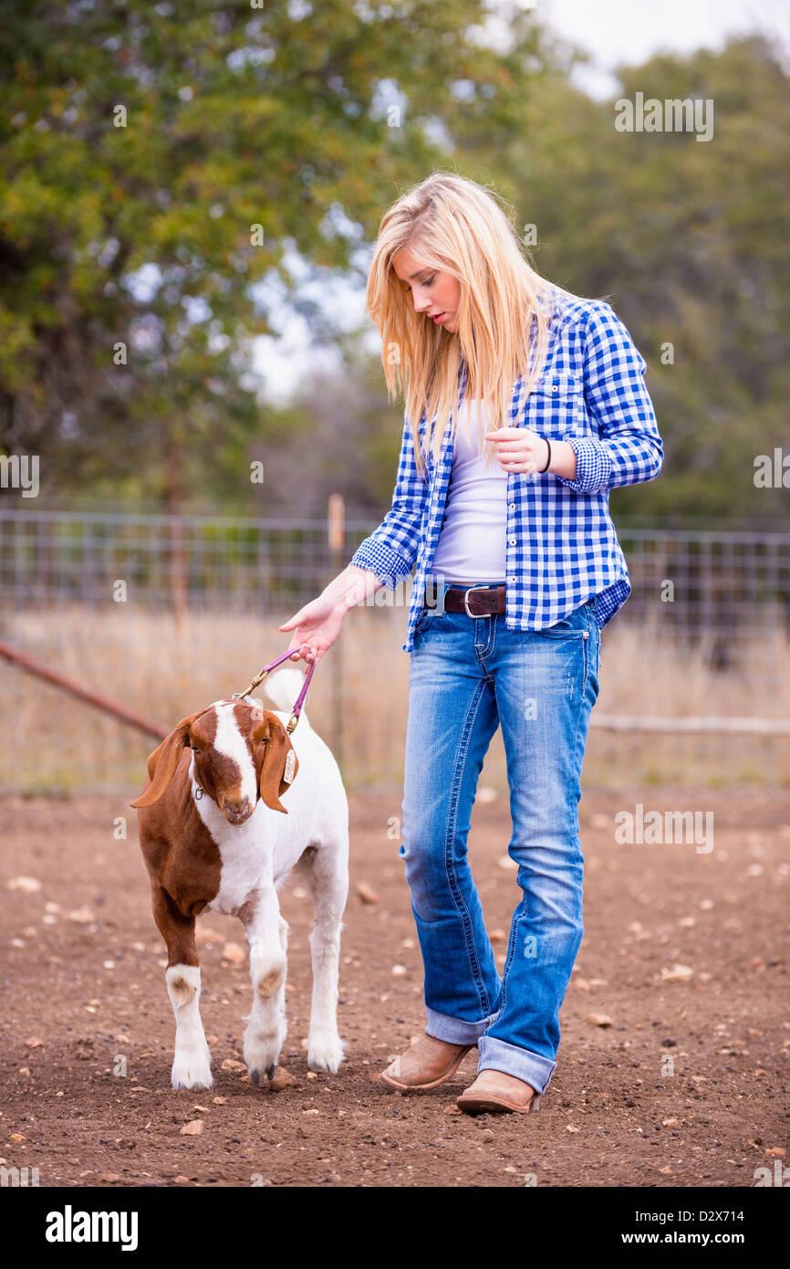 Girl walking goat on livestock farm - Stock Image
