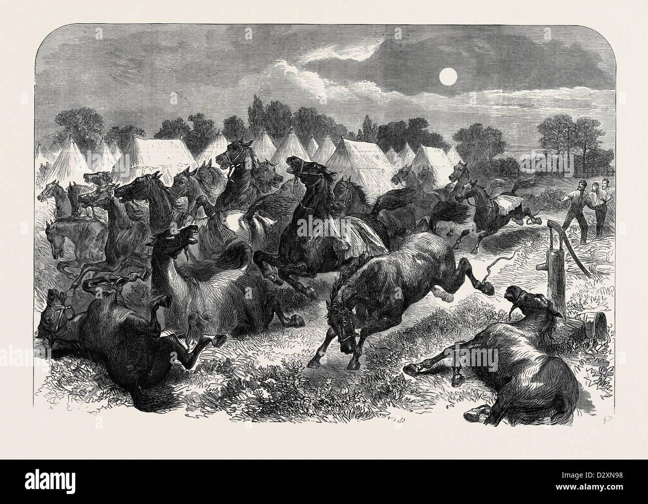STAMPEDE OF CAVALRY HORSES AT ALDERSHOTT CAMP 1871 - Stock Image