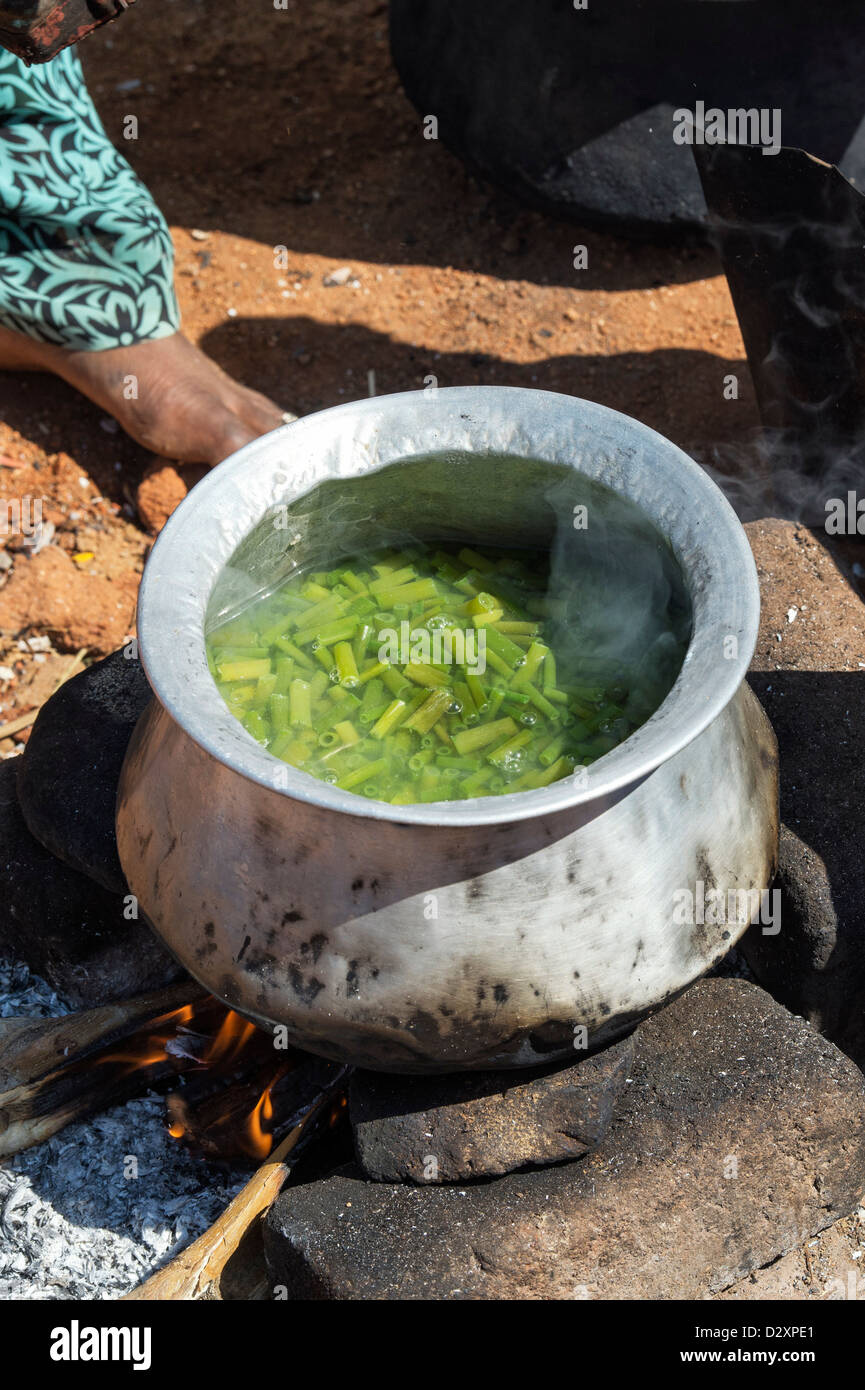 Indian woman in a rural village cooking garlic and chives for making indian woman in a rural village cooking garlic and chives for making curry on an open fire outside her home india forumfinder Choice Image