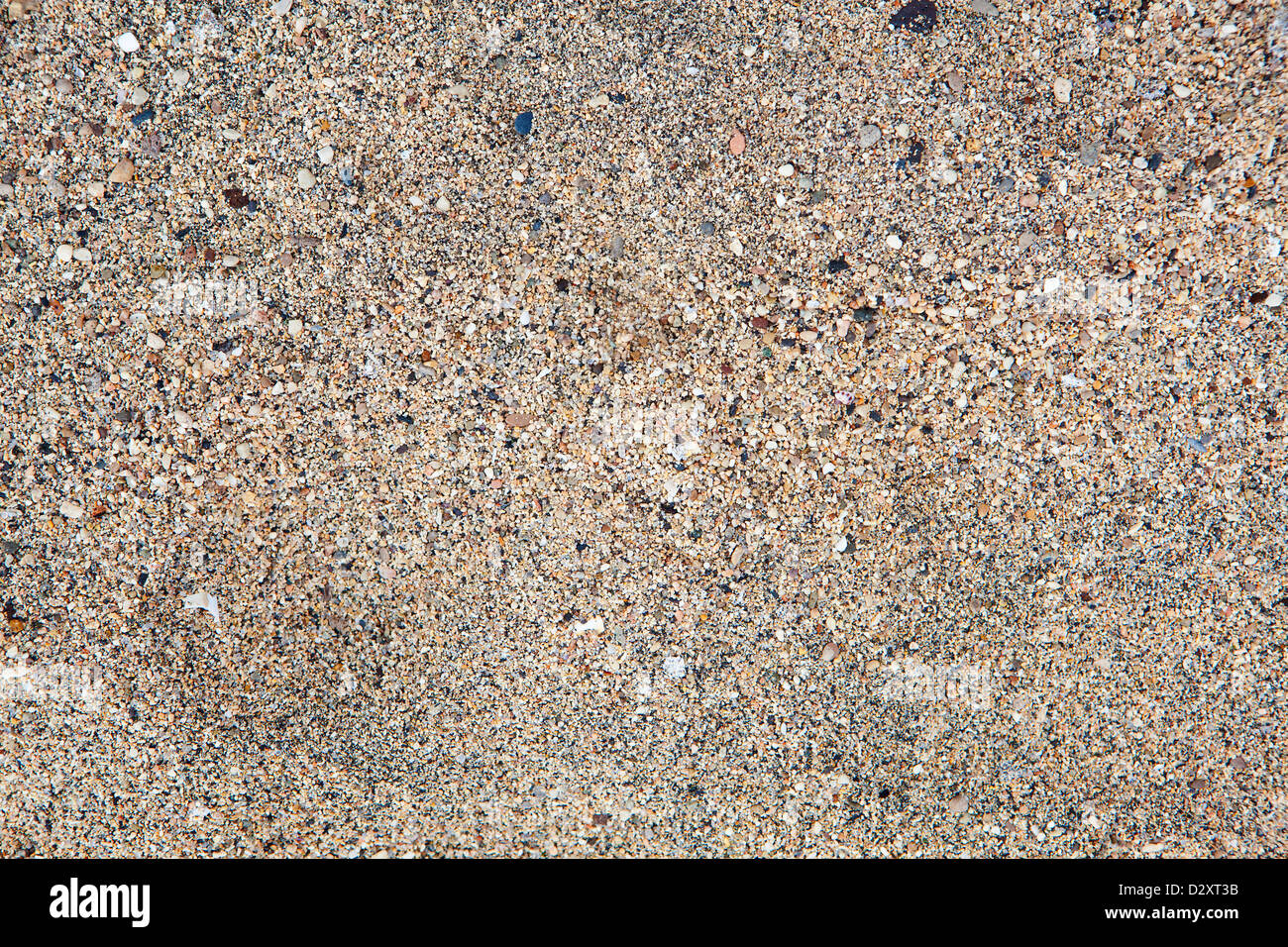 Background texture sand of the beach - Stock Image
