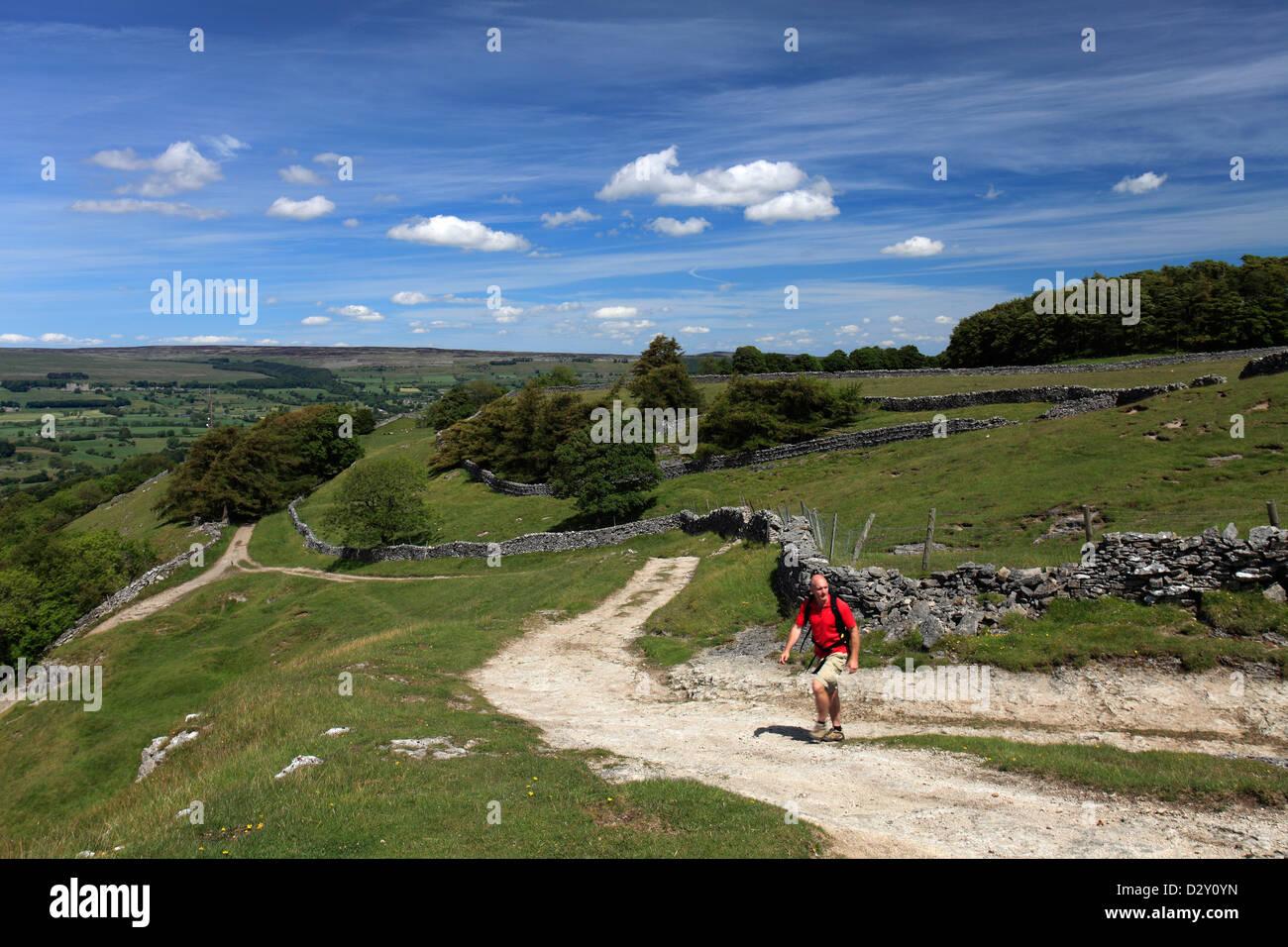 Adult male walker near West Burton village, Wensleydale, Yorkshire Dales National Park, England, United Kingdom - Stock Image