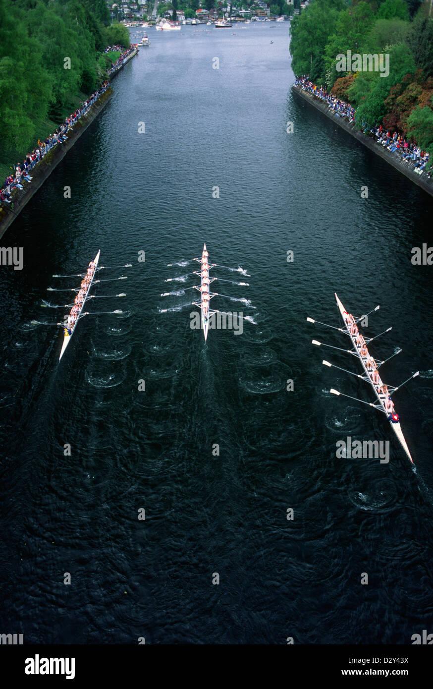 Crew Race, Seattle - Stock Image