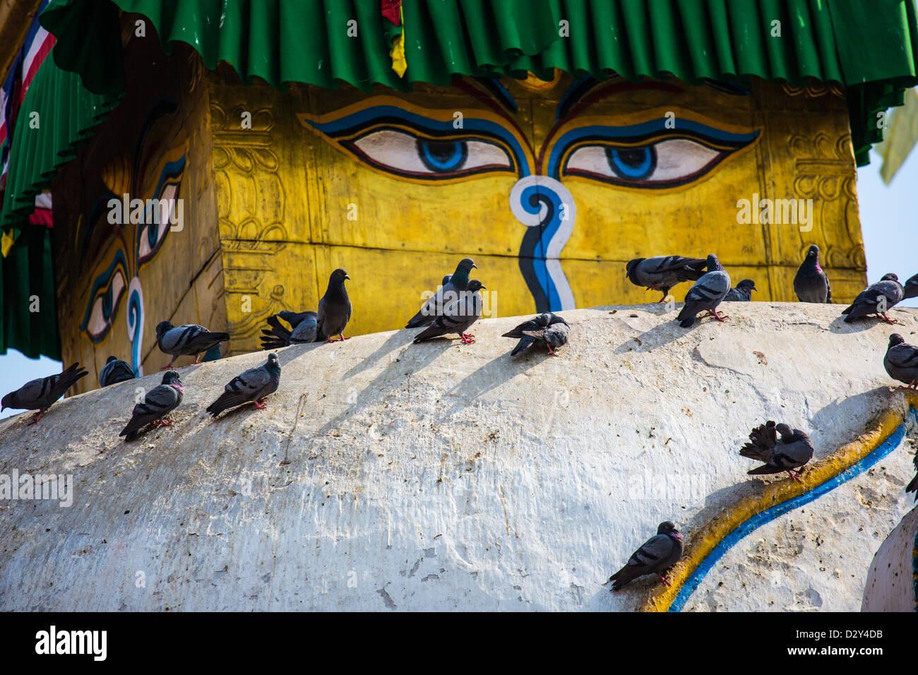 Shree Gha Buddhist Stupa, Thamel, Kathmandu, Nepal - Stock Image
