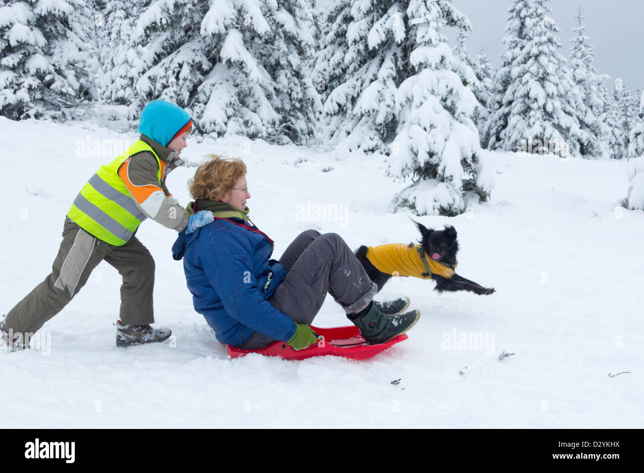 mother and son sledding on Sonnenberg near St. Andreasberg, Harz Mountains, Lower Saxony, Germany Stock Photo